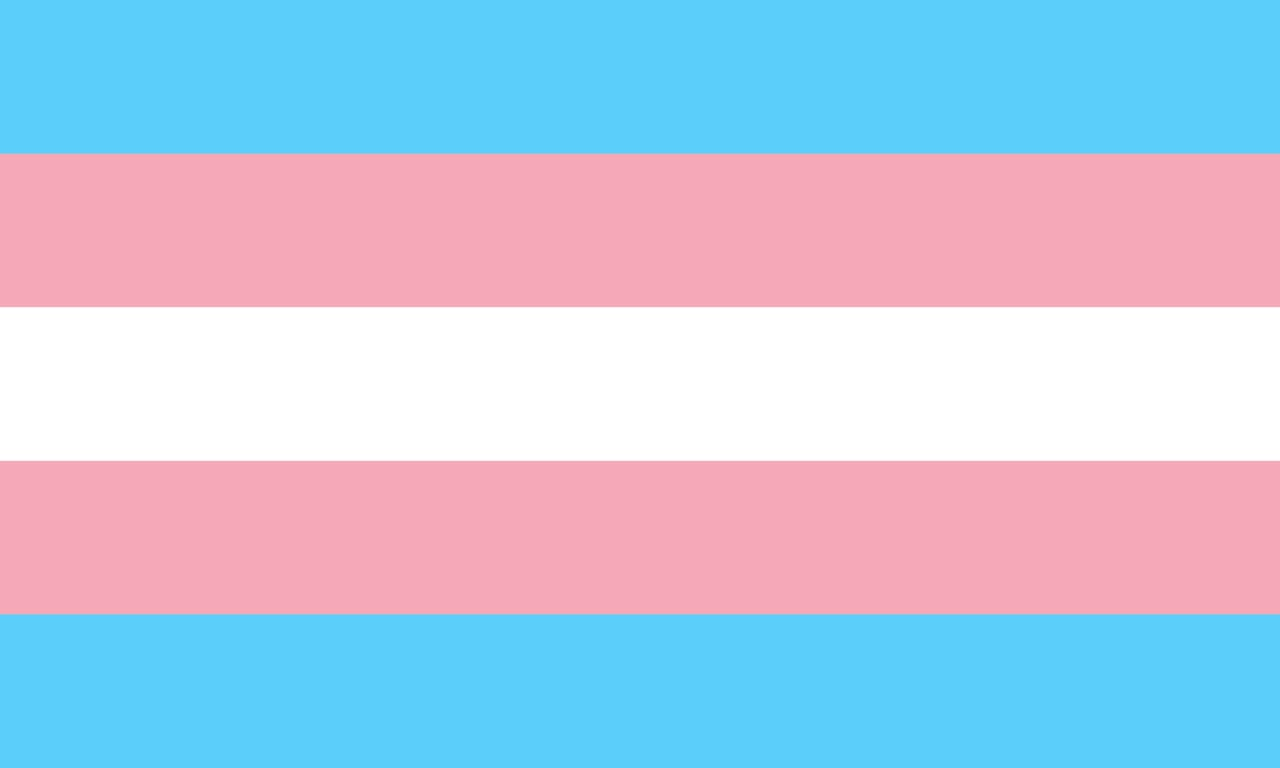 QueerEvents.ca - Queer Flags - Trans Flag Image